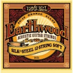 Ernie Ball 12-string Acoustic Guitar Strings